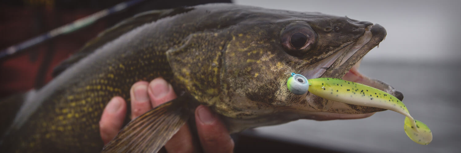 Walleye Jig Heads
