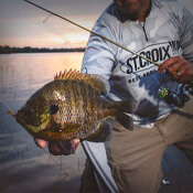 Panfish Rods