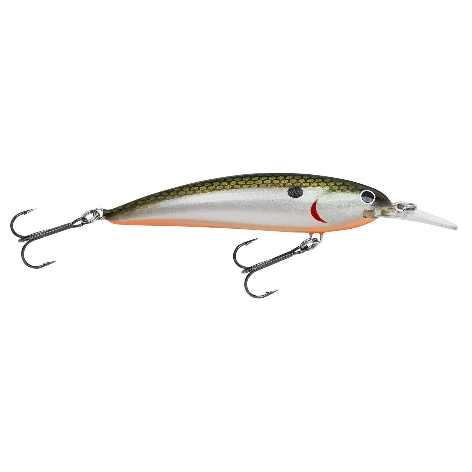Tennessee Shad Orange