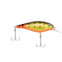 Firetail Hot Perch
