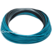 RIO Lake Series Fathom CleanSweep Sinking Fly Line