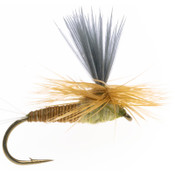 Sulpher Dry Fly - 2 Pack