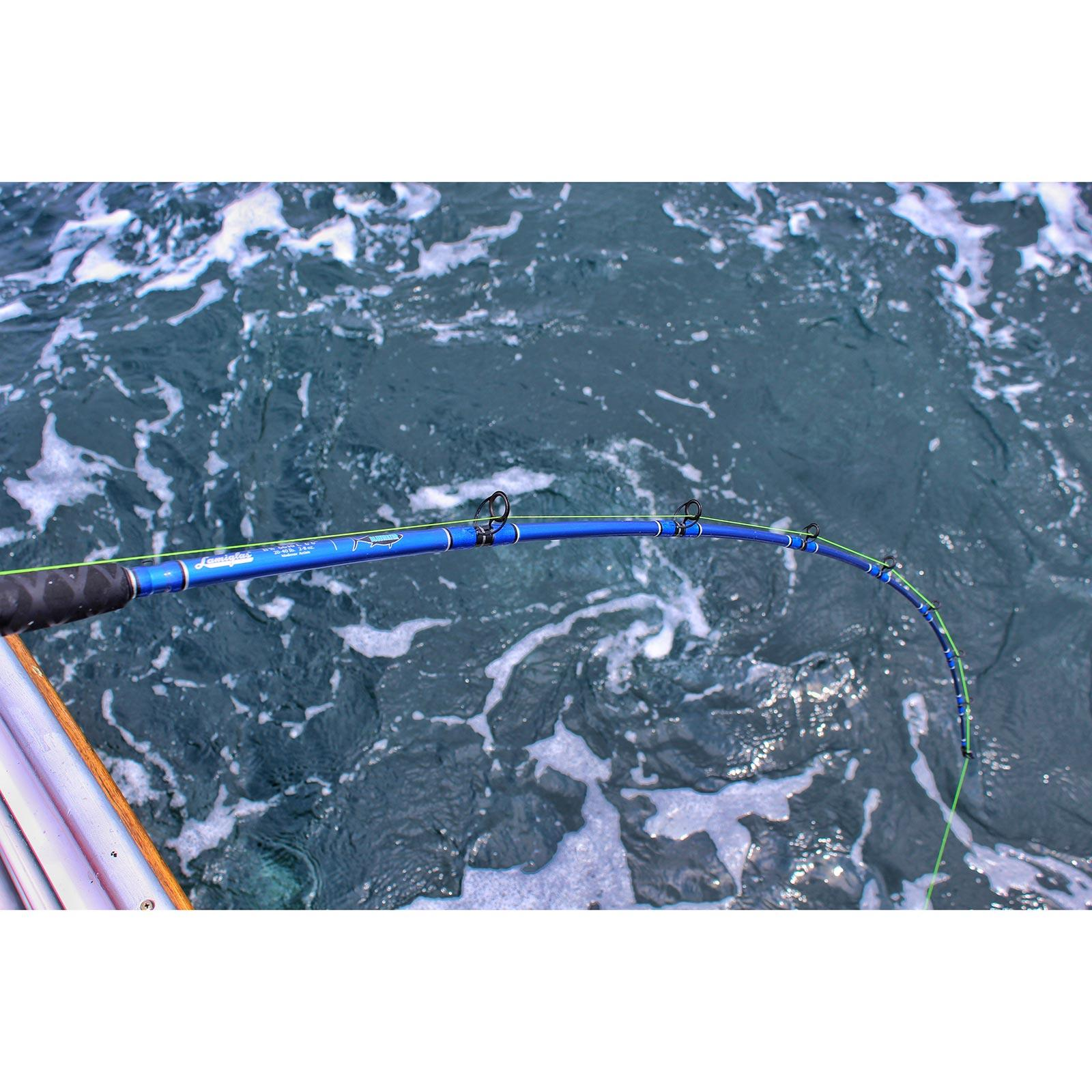 Lamiglas Bluewater Spinning Rod - In Use View